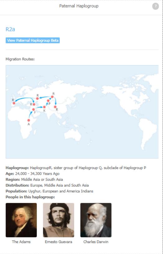 Paternal Haplogroup